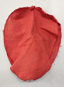 Apple Structure One, Dyed Canvas, 2012